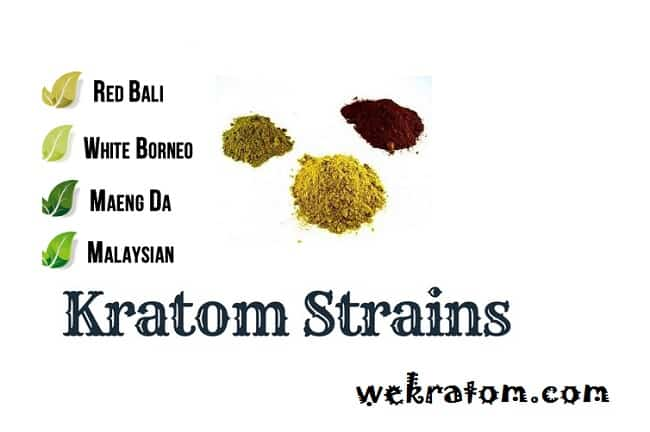 Choose Best Kratom Strain