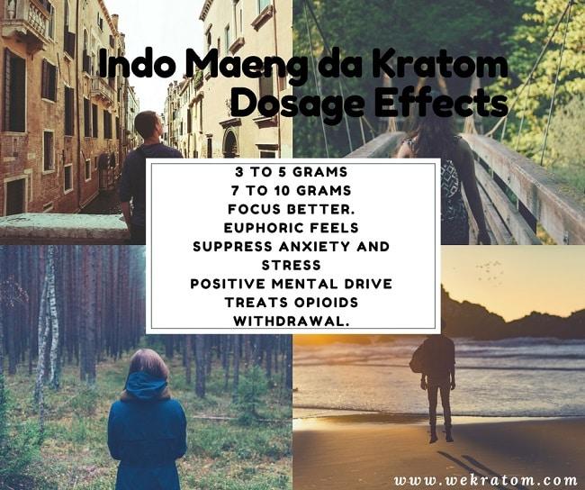 Maeng da Indo Kratom Dosage Effects