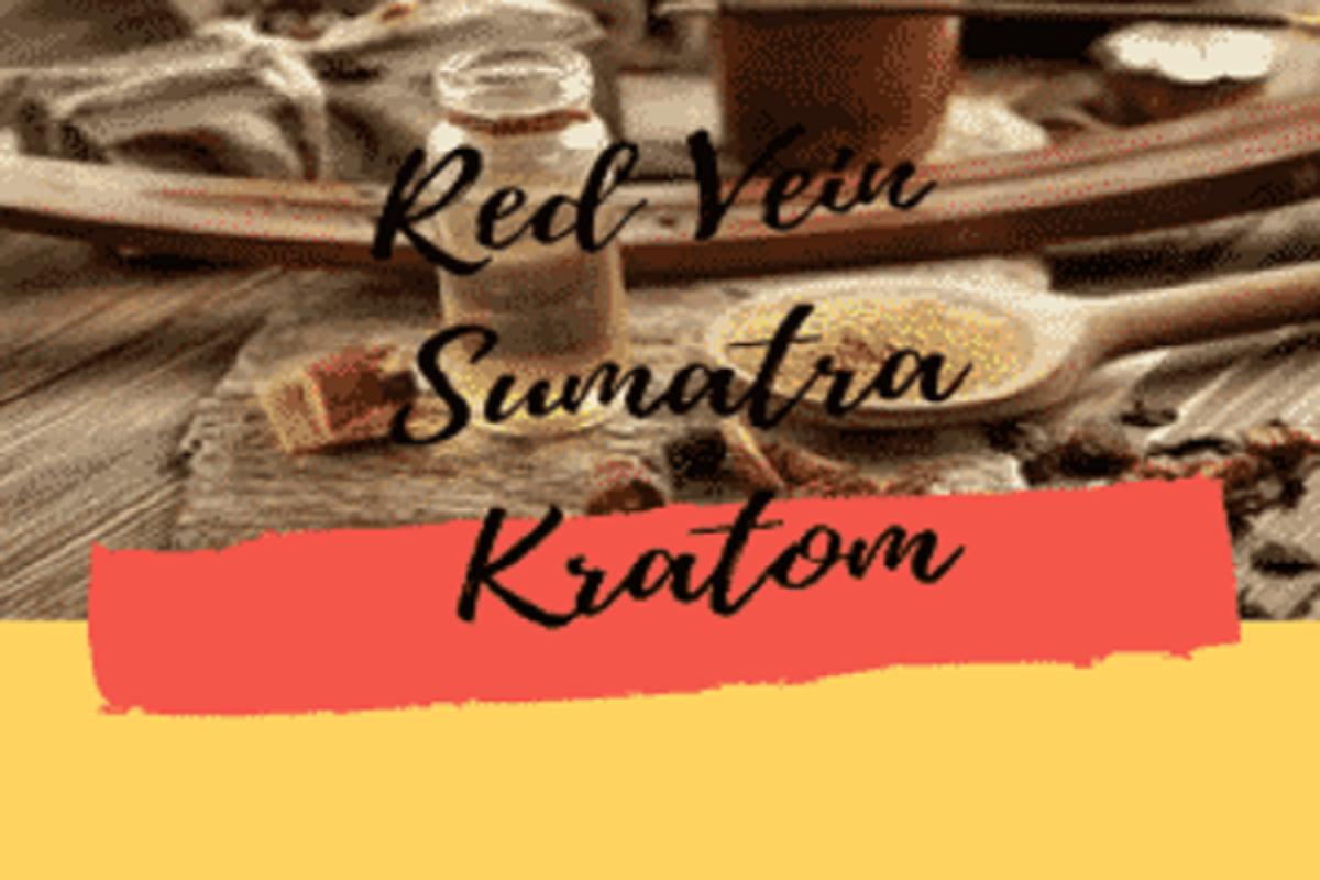 Herbal Salvation Red Vein Sumatra