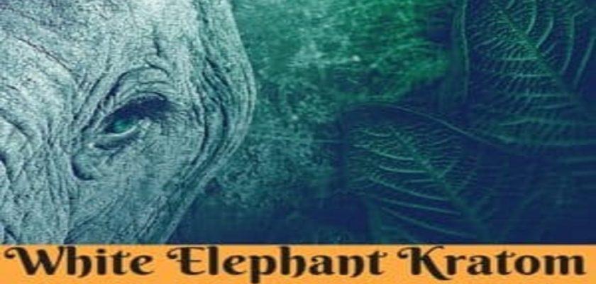 White-elephant-kratom