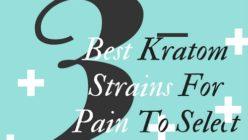 3 Best Kratom Strains For Pain