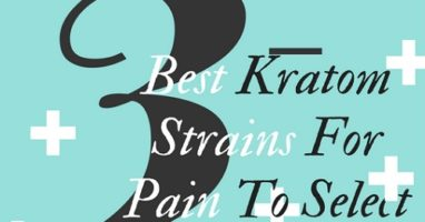 3 Best Kratom Strains For Pain