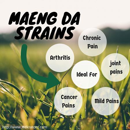 How Maeng Da Kratom Helps In Pain Relief