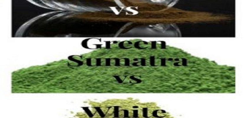 Red-Sumatra-vs-Green-Sumatra-vs-White-Sumatra-270x300