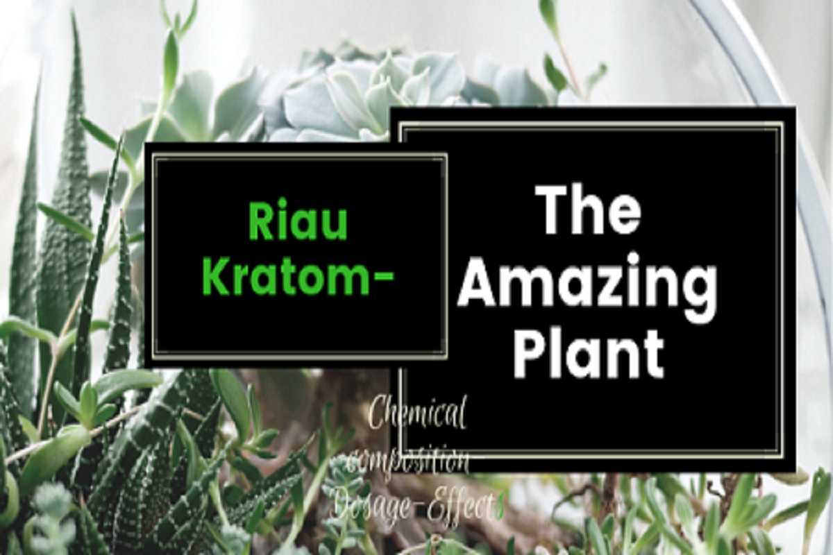 Riau Kratom-The Amazing Plant