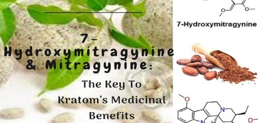 7-Hydroxymitragynine-Mitragynine_-The-Key-To-Kratom's-Medicinal-Benefits