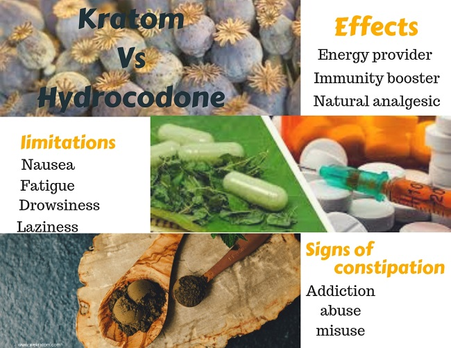 Kratom Vs Hydrocodone review