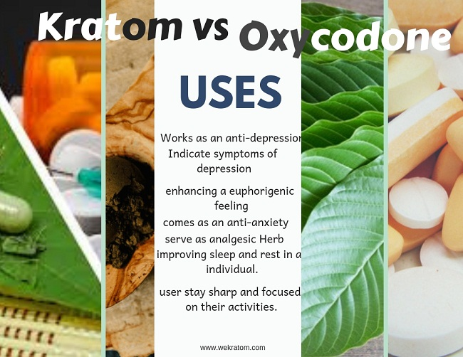 Kratom Vs Oxycodone review