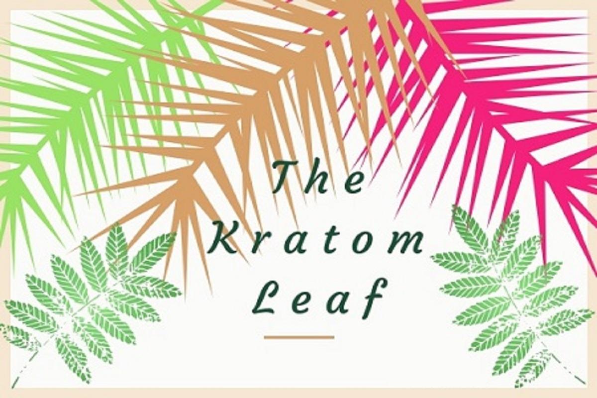 Kratom leaf