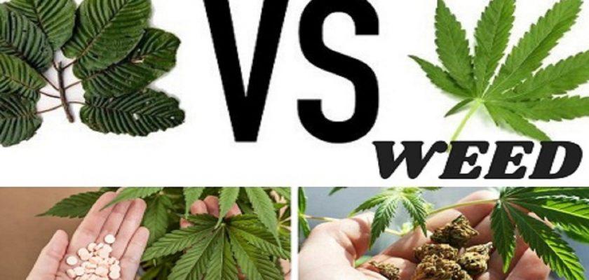 Kratom-vs-weed