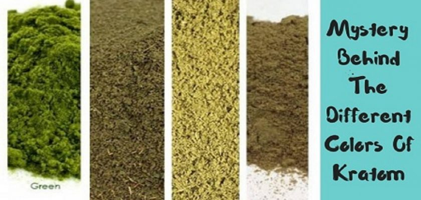 Mystery-Behind-The-Different-Colors-Of-Kratom