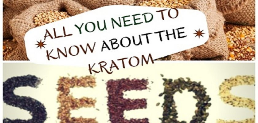 All-You-Need-To-Know-About-The-Kratom-Seeds