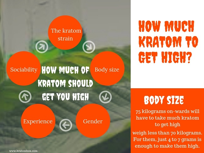 How much of kratom should get you high