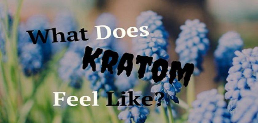 What-Does-Kratom-Feel-Like