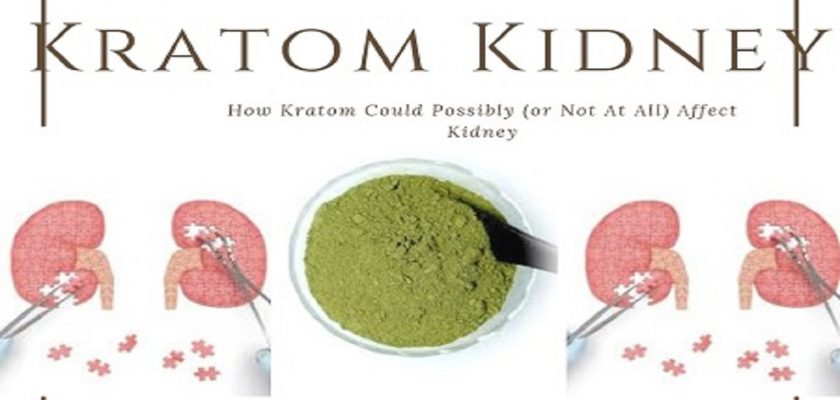 Kratom-kidney
