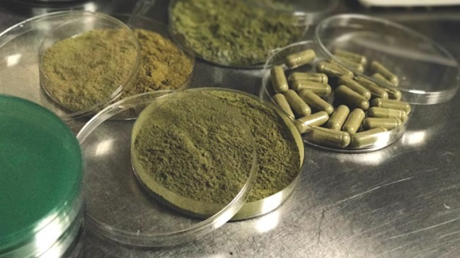 Effects-of-Kratom