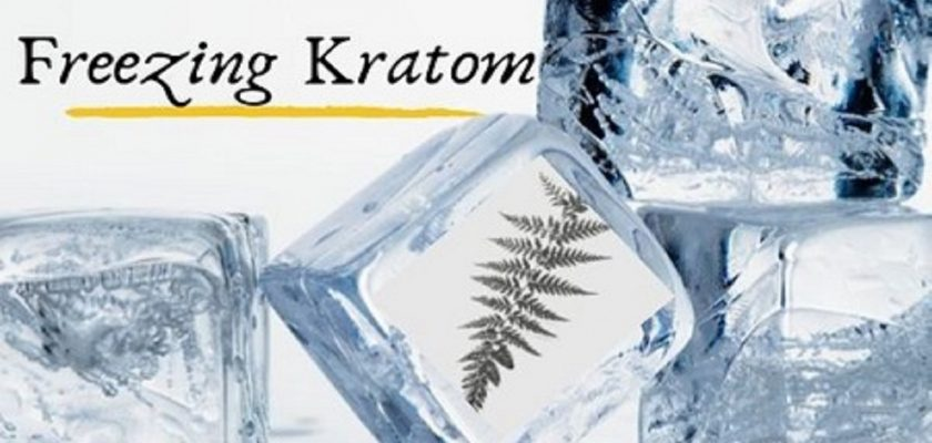Freezing-kratom