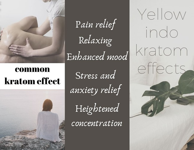 Yellow indo kratom effects