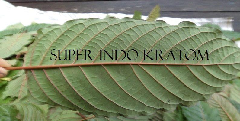 Super Indo Kratom